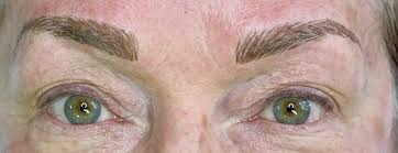 as a del person eyebrows are what first drew me into the permanent makeup field