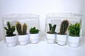 Ikea Cactus Ikea Cactus Grunge Image 2837449 By Marky On Favimcom