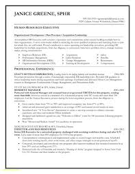 Fancy Resume Templates Free Free Download Executive Resume Template