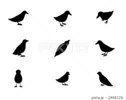 シルエット鳥のイラスト素材 2998729 Pixta