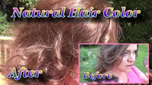 Henna Healthy Hair Color How To Color Highlight Your Hair With Natural Dyes