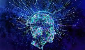 Image result for fractal brain