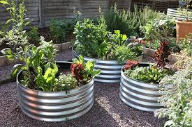 container gardening with corrugated