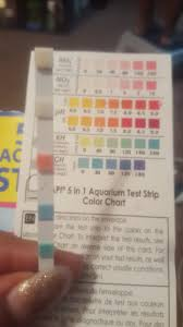 Tetra Test Strips Chart Tetra Test 6 In 1 Perfect Tetra Test 6 In 1 With Tetra Test