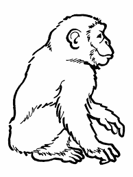 Small Picture Awesome Drawing of a Chimpanzee Coloring Page Awesome Drawing of