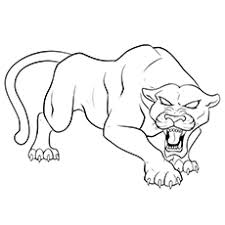 Small Picture Panther Coloring Pages Bestofcoloringcom