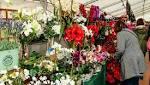 Revamped Rockbourne Fair returns for Stars Appeal