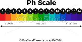 Ph Scale Vector Chart