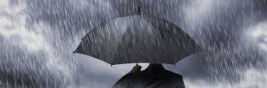 Research Radar: Eight managers riding out the storm | Citywire