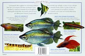 Guida pratica alla scelta di pesci tropicali di acqua dolce. tutte