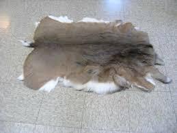 deer hide rug elk skin rug lovely deer rugs for deer hide rug uk