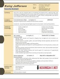 Sample Executive Assistant Resume Beauteous Executive Assistant Resume Samples 28