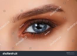 brown smokey blue eyes eye makeup stock photo edit now 524029957