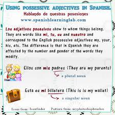 Using Spanish Possessive Adjectives In Sentences