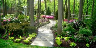Small Picture Garden Design Garden Design with back garden ideas garden designs