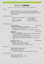017 Creative Resume Templates For Microsoft Wordesh Amp Samples