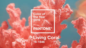 Living Coral Is Pantones 2019 Color Of The Year Adweek