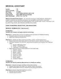 Medical Assistant Summary For Resume Aurelianmg Com