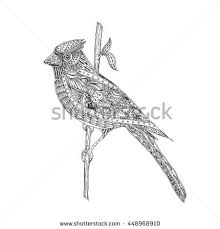 Small Picture Bird Handdrawn Bird Cardinal Ethnic Doodle Stock Vector 448968910
