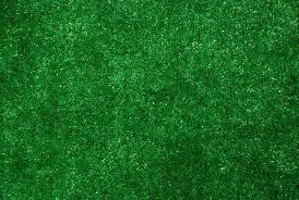 dean indoor outdoor green artificial grass turf area rug 6 x 8 carpet