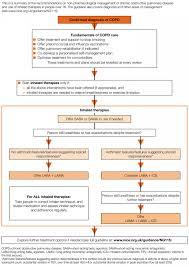 Copd Management Plan Self Nice Pdf Nhs Chronic Medication Gp