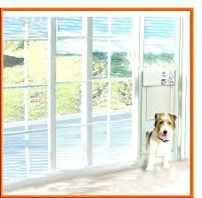 awesome doggie doors for sliding glass doors pet door for sliding glass door sliding glass door