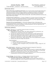 Resume Templates Best Solutions Of Project Management Job
