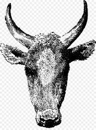 beef cow head clip art.  Beef Texas Longhorn Beef Cattle Angus Clip Art  Bull Throughout Cow Head Art A