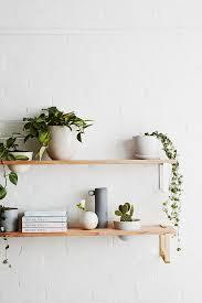 Best 25 Plant Shelves Ideas On Pinterest Plant Ladder Shelves Indoor  Shelving Ideas