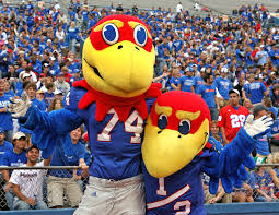 top best sports management degree programs sports management university of kansas sports management