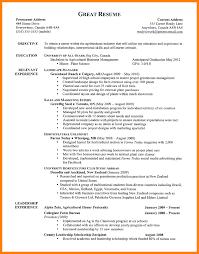 6+ good resume formatting