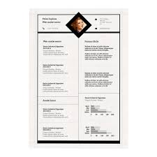 Resume Template Free Templates For Mac Professional Cv In 89