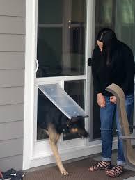 in glass pet door gallery