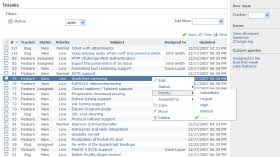 System Issue Tracking Template Features Redmine