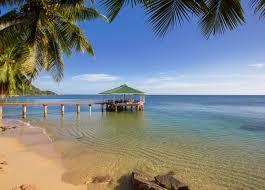 Bildergebnis für Coco de Mer - kostenlose Fotos