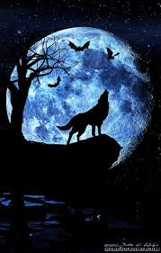 wolf howling at the moon. Plain Wolf It Shows A Wolf Howling At The Moon Itu0027s Evening Time And It Looks Like  Owls Are Flying About With Wolf Howling At The Moon