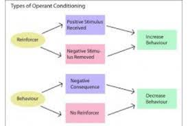 Operant Conditioning Psych In My Life
