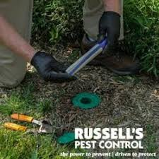 russells pest control knoxville tn. Brilliant Pest Photo Of Russellu0027s Pest Control  Knoxville TN United States And Russells Knoxville Tn