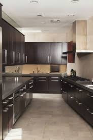 Luxury Galley Kitchen Design Ideas Pictures