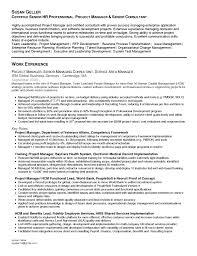 image of sample business management resume large size - Business Management  Resume Objective Examples