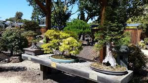bonsai gardens. Bonsai Gardens A