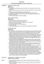 Audit Manager Resume Resume Cover Letter