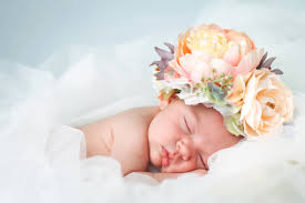girls baby photos flower names for girls baby name ideas interflora