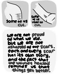 Self Harm Quotes Extraordinary Self Injury Quotes Sayings Self Injury Picture Quotes