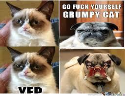 grumpy cat good smile. Unique Cat Grumpy Cat Does Smile In Good P