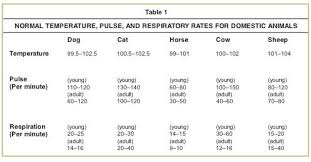 Temperature Pulse Respiration Chart Template Rates From Colville And Bassert Clinical Anatomy And
