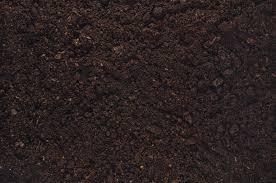 fertile garden. Fertile Garden Soil Texture Background Top View