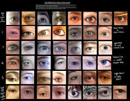 eye shape chart human eye colour chart by delpigeon the eye si gh t