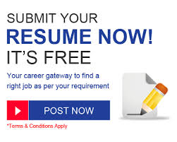 Free Resume Builder No Cost z arf com Diamond Geo Engineering Services