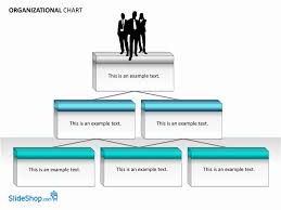 Microsoft Word Organizational Chart Template Free Organizational Chart Examples Ardiansyah Organizational